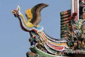 feniks kineski simbol izdrzljivosti