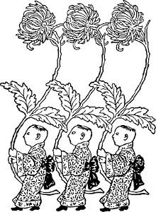 hrizantema cvet sreće